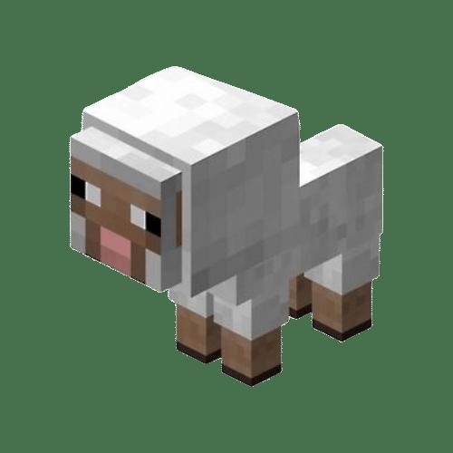 Minecraft Sheep Kopen